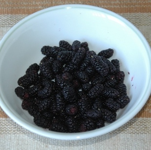 mulberry070615